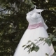 White Lace Wedding Dress Hang on the Tree Branch - VideoHive Item for Sale