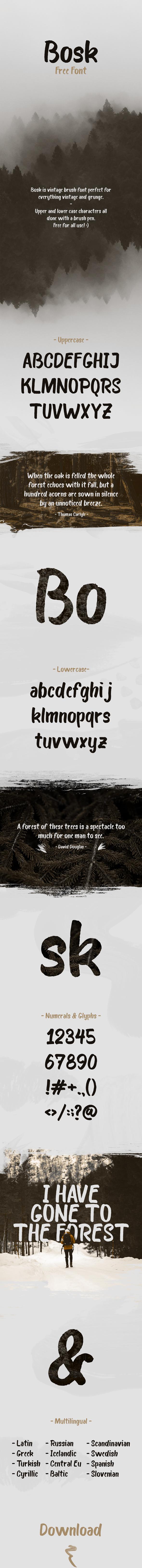 Bosk Brush Font - Hand-writing Script