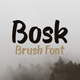 Bosk Brush Font - GraphicRiver Item for Sale
