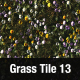 Grass Tile Texture 13 - 3DOcean Item for Sale