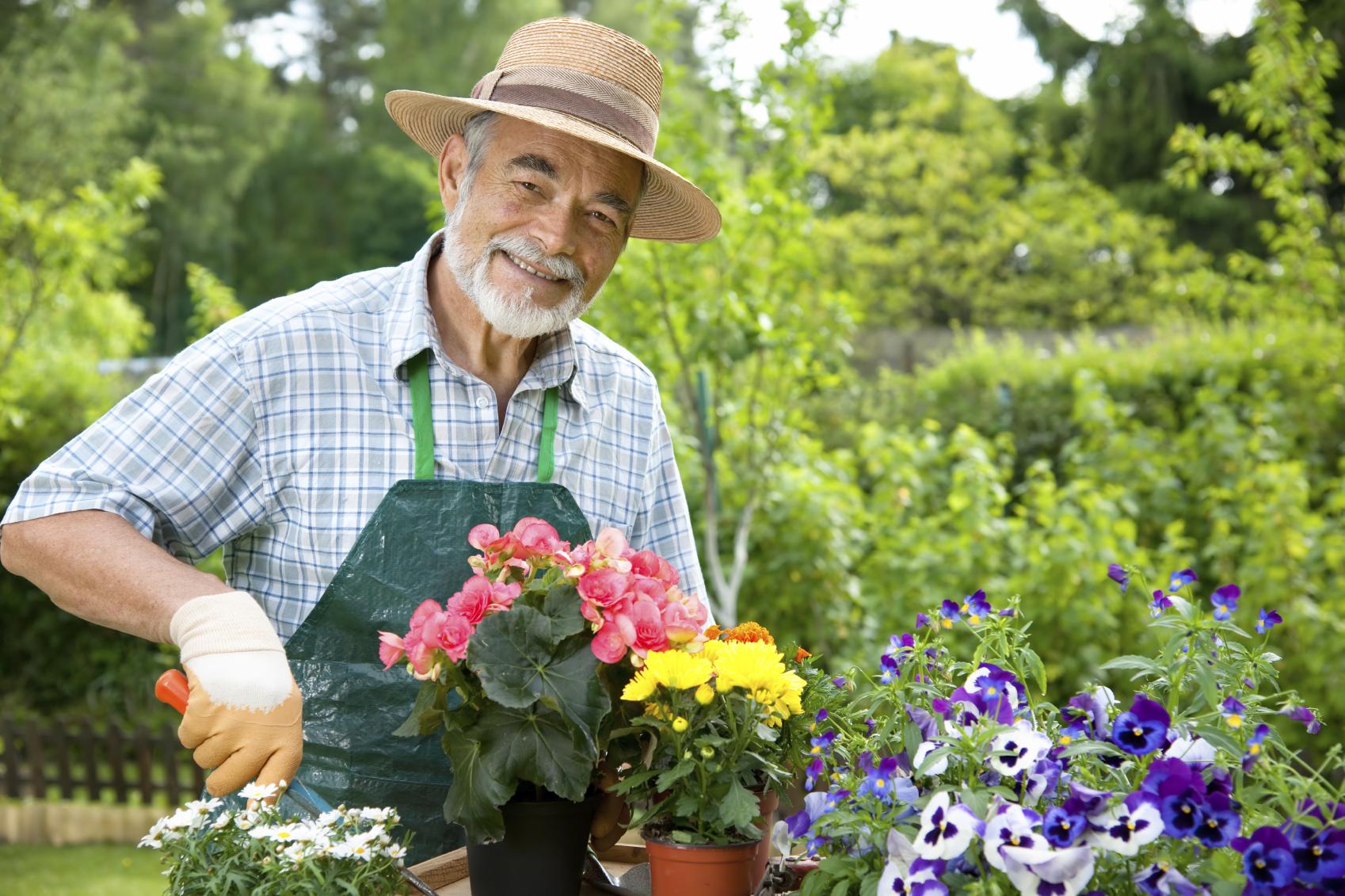 نتیجه تصویری برای باغبانی