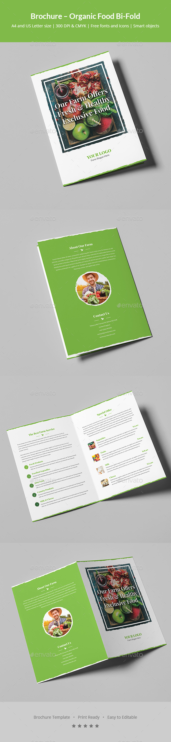GraphicRiver Brochure Organic Food Bi-Fold 20431566
