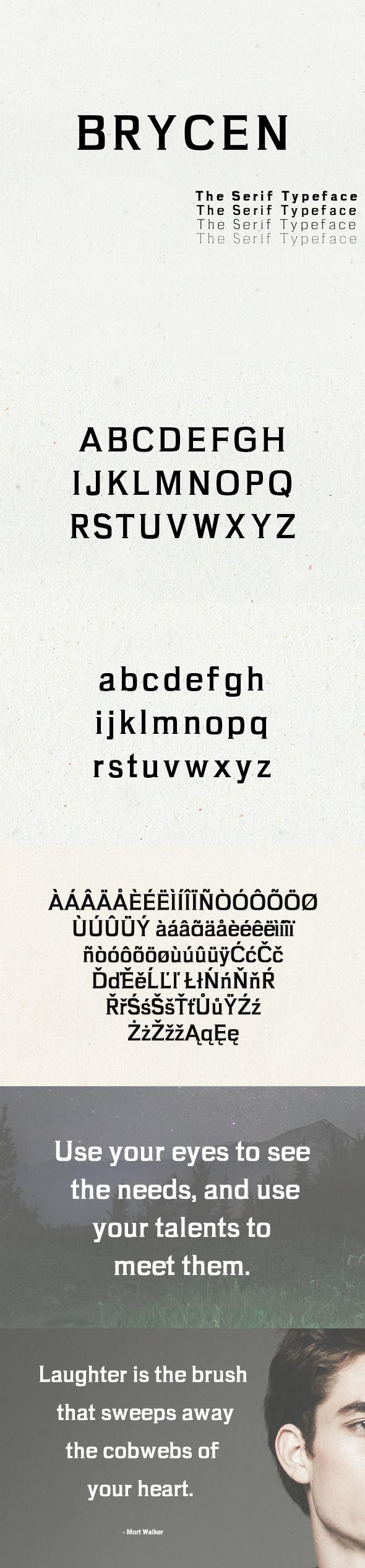 Brycen Serif Premium Font Family - Serif Fonts