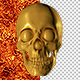 3D Gold Skull - 6 Renders - GraphicRiver Item for Sale