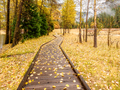 Meadow with boardwalk in Yosemite National Park Valley at autumn