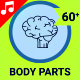 Body Parts Icons - VideoHive Item for Sale