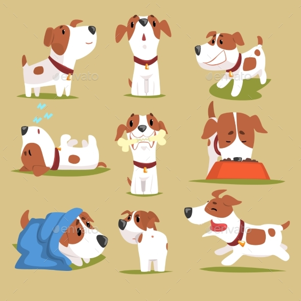 Puppy Daily Routine Set - Animals Characters