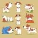 Puppy Daily Routine Set