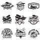 Set of Flying Academy Emblems.