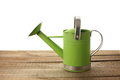 Watering Can - PhotoDune Item for Sale