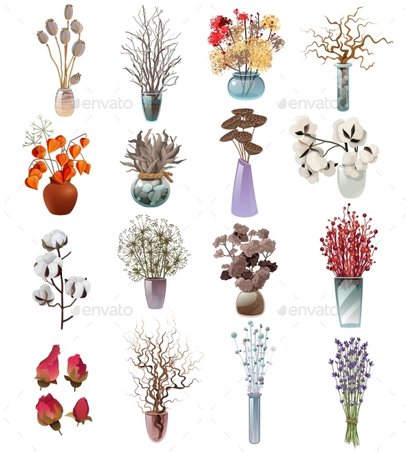Collection Of Dry Flowers Bouquets In Vases - Objects Vectors