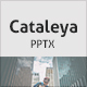 Cataleya PowerPoint Presentation