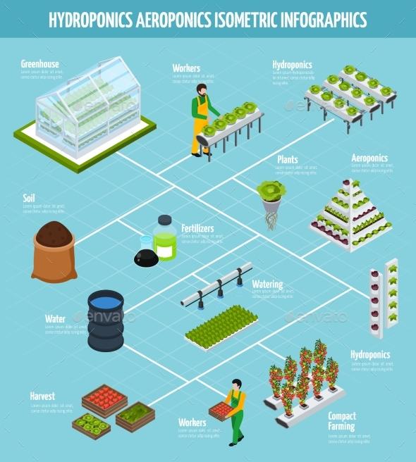 Hydroponics Infographic Set - Miscellaneous Conceptual