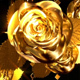 Golden Roses - VideoHive Item for Sale