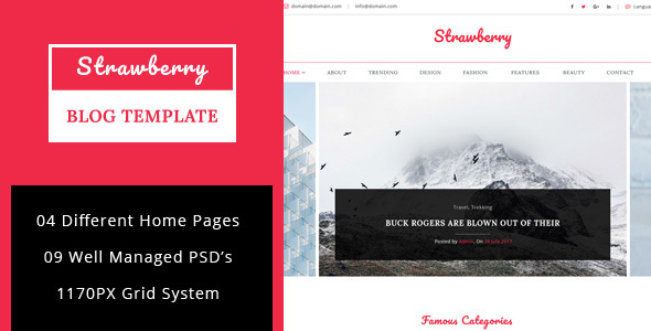 Strawberry – Minimal Blog PSD Template