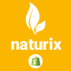 Naturix - Organic Responsive Shopify Theme (Sections Ready)