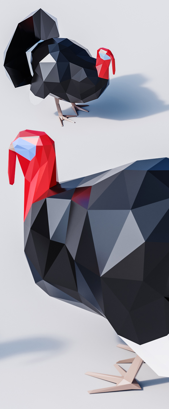 3DOcean Lowpoly Turkey 20447991