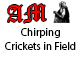 Chirping Crickets in Field