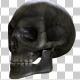 Skull - VideoHive Item for Sale