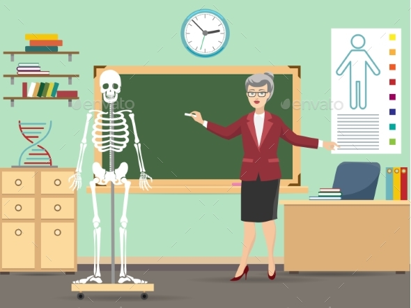 GraphicRiver Classroom with Human Skeleton and Teacher 20450715