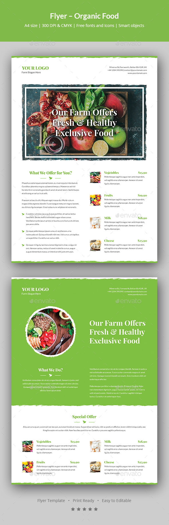 Flyer – Organic Food - Restaurant Flyers