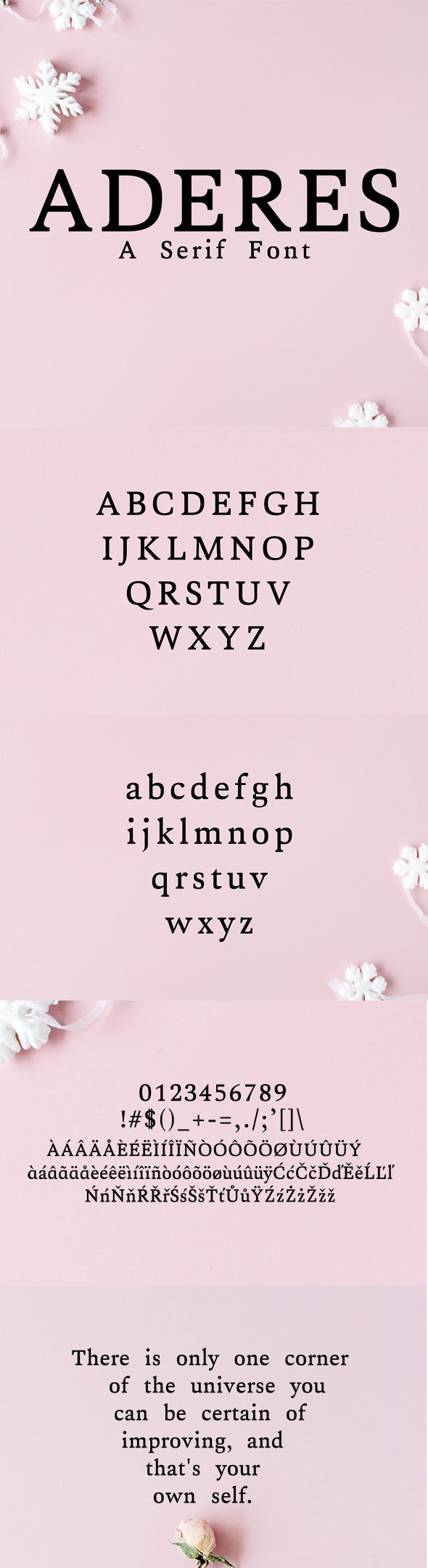 Aderes Serif Font Family - Serif Fonts