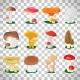 Edible Mushrooms on Transparent Background