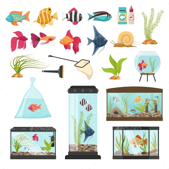 Aquarium Essential Elements Collection - Animals Characters