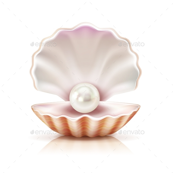 Shell Pearl Realistic Isolated Image - Miscellaneous Vectors