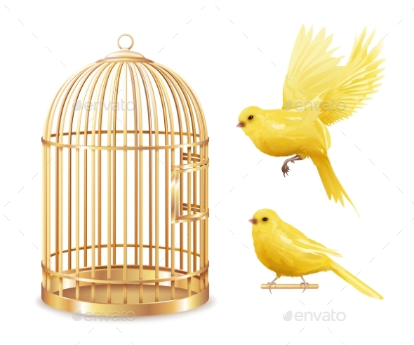 Golden Canary Cage Set - Animals Characters