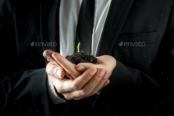 Businessman Hands Holding Soil with Young Sprout - Stock Photo - Images