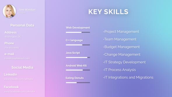 Minimal Visual Resume
