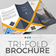 Trifold Brochure Template 08 - GraphicRiver Item for Sale