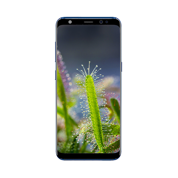 Galaxy S8 Blue - 3DOcean Item for Sale