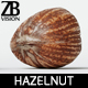Hazelnut 007 - 3DOcean Item for Sale