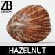 Hazelnut 007