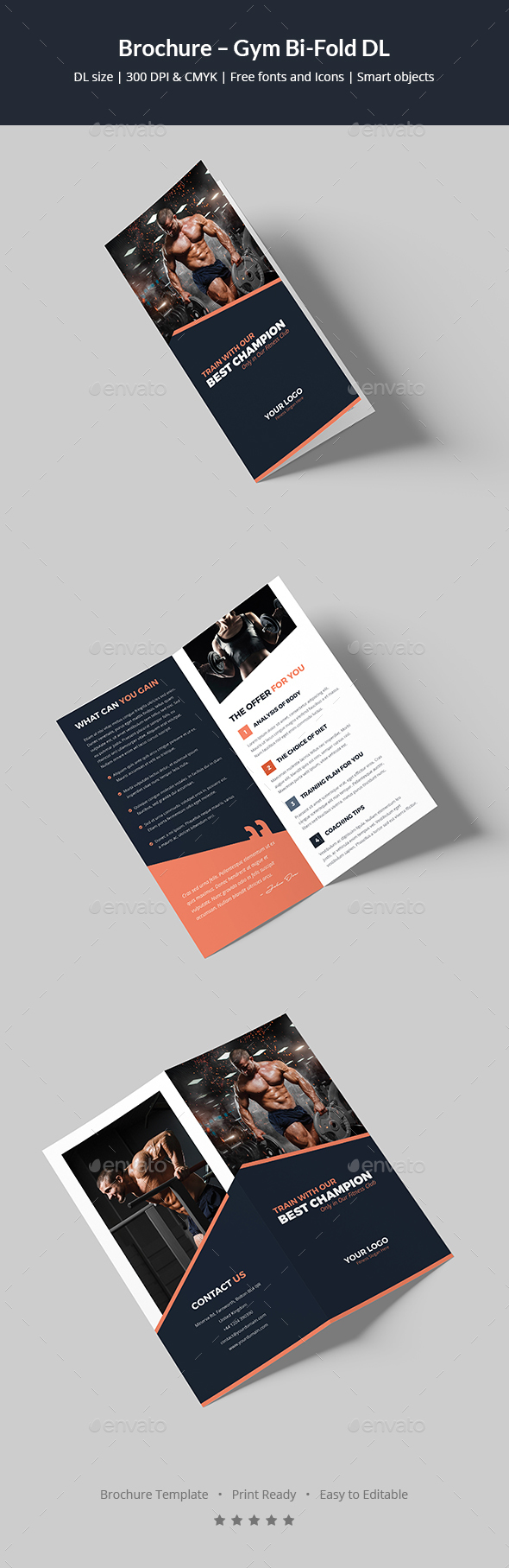 Brochure – Gym Bi-Fold DL - Corporate Brochures
