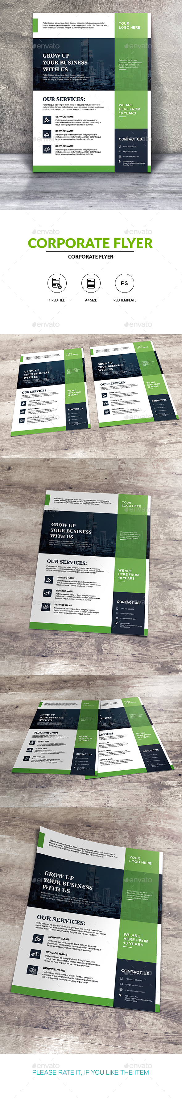 GraphicRiver Corporate Flyer Template 20461975