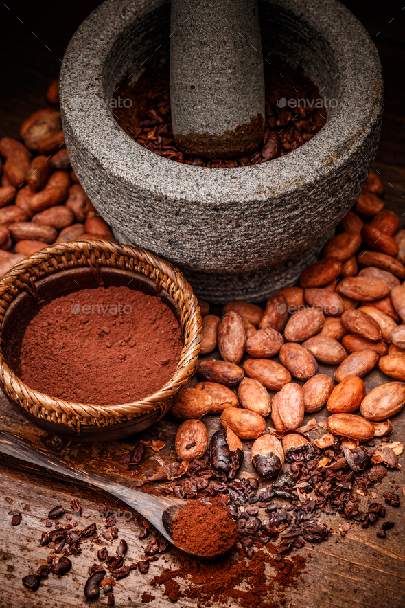 Cacao beans - Stock Photo - Images