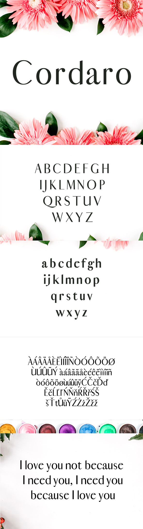 Cordaro Serif Typeface - Serif Fonts