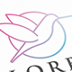 Colibri Bird Color Logo