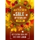 Autumn Sale Discount Vector Poster of Leaf Fall