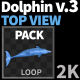 Dolphin 3 Pack - VideoHive Item for Sale