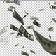 Flying Money - VideoHive Item for Sale