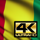 Guinea Flag 4K - VideoHive Item for Sale
