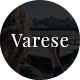 Varese - Blog PSD Template