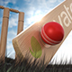 Cricket Logo - VideoHive Item for Sale