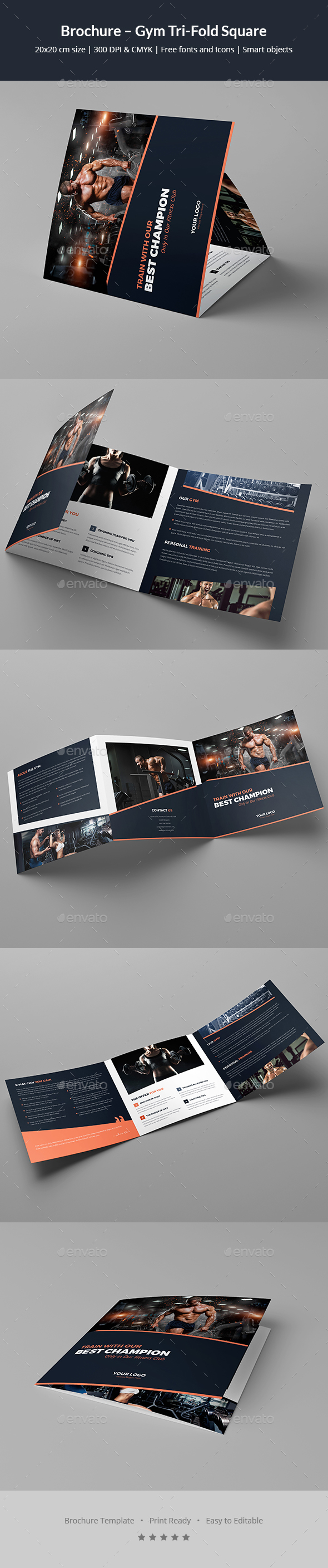 Brochure – Gym Tri-Fold Square - Corporate Brochures