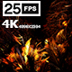 Jungle Palms 03 4K - VideoHive Item for Sale