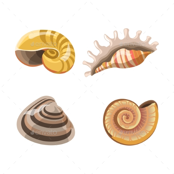 Shells or Seashells Vector Isolated Icons - Animals Characters